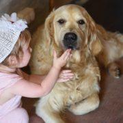 Kinder_und_Hunde